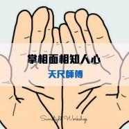 掌相面相-知人心 (共8堂)