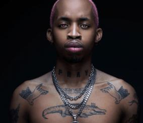 Tshego – Pink Panther [ALBUM]