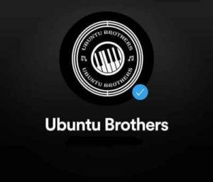 DOWNLOAD MP3 Caltonic SA & Ubuntu Brothers – Ao Sesi Ft