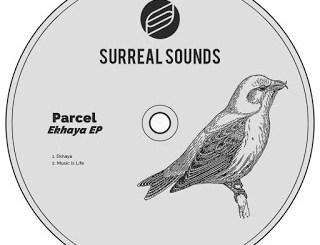 Parcel – Music Is Life (Original Mix) (Audio)