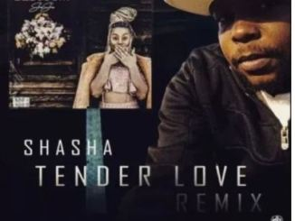 Sha Sha – Tender Love (King Matalic SA Remix)