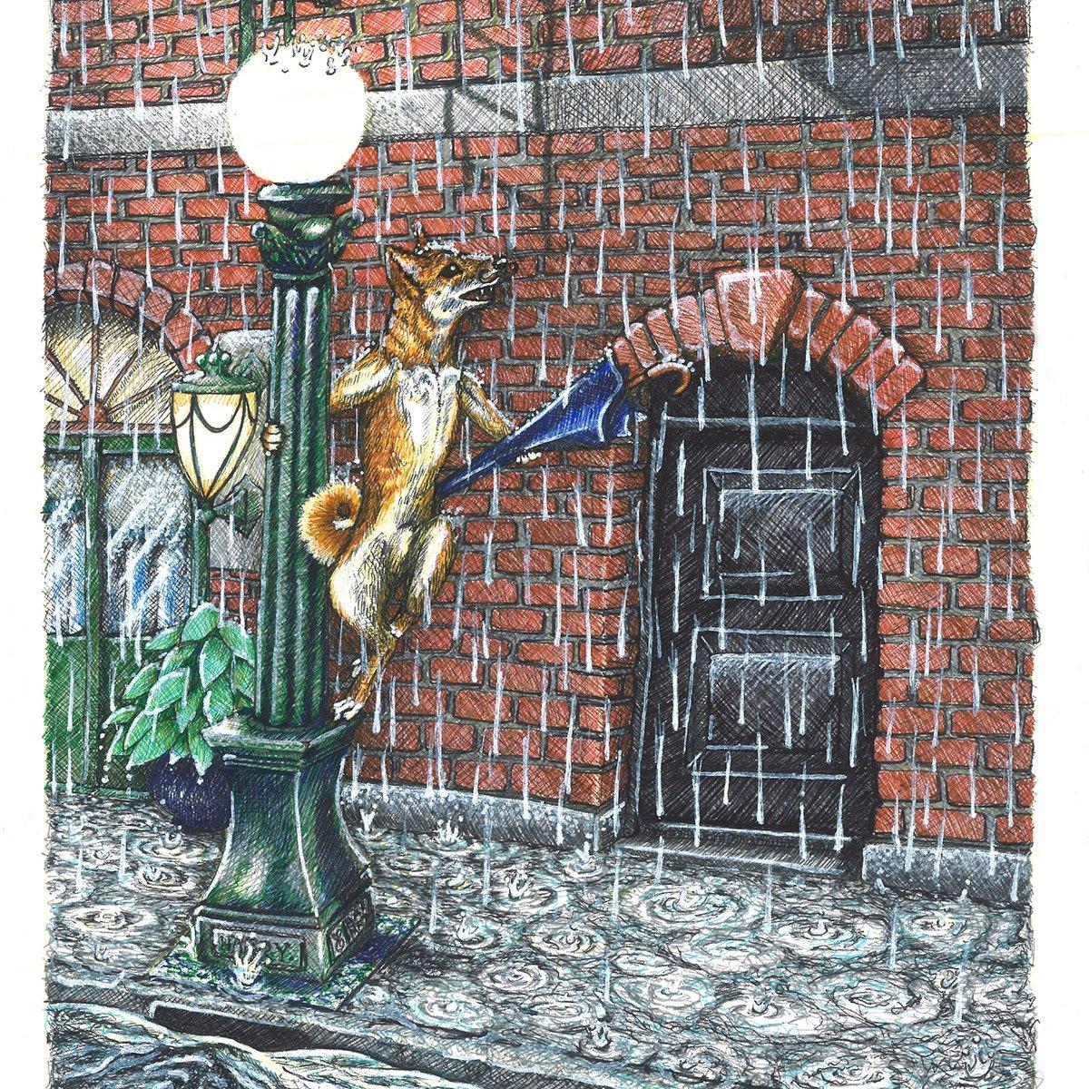 Harry in the Rain