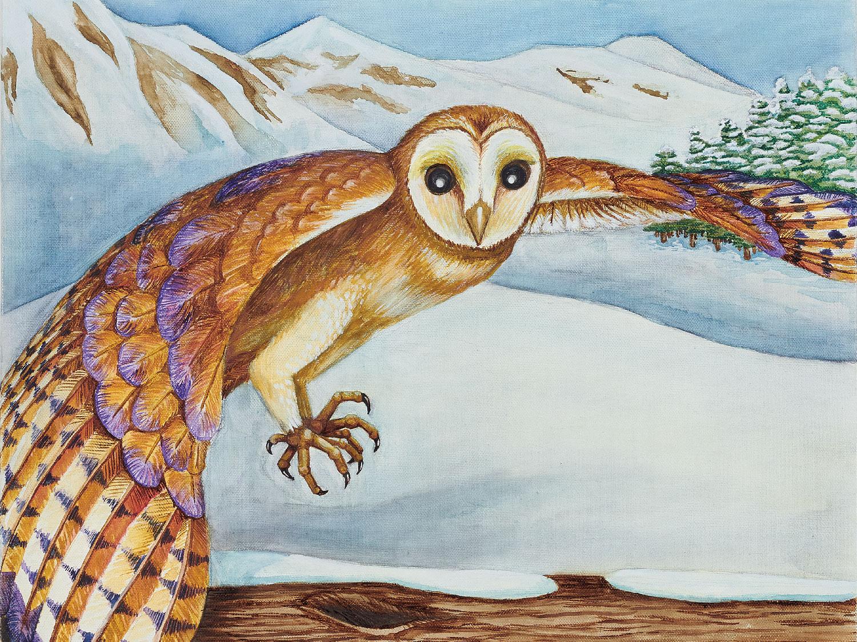 Winter Wildlife: Barn Owl