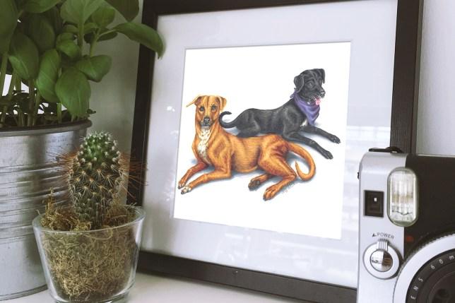 Tim Riggins & Lyla Garrity Pet Portrait