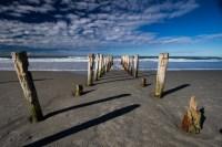 _MG_7843Dunedin, St Clair, St Kilda beach07