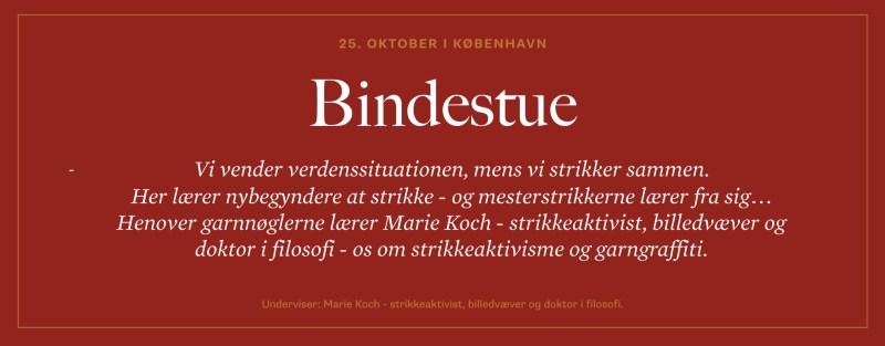 Bindestue web.001