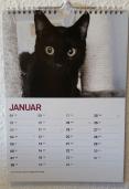Kalender_Jan