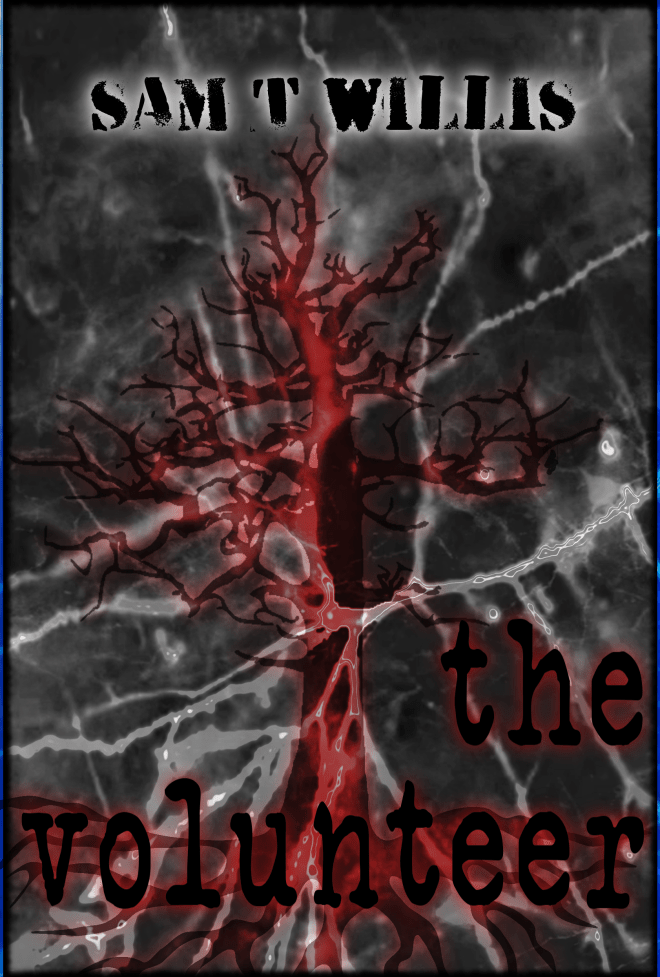 The Volunteer - Cover