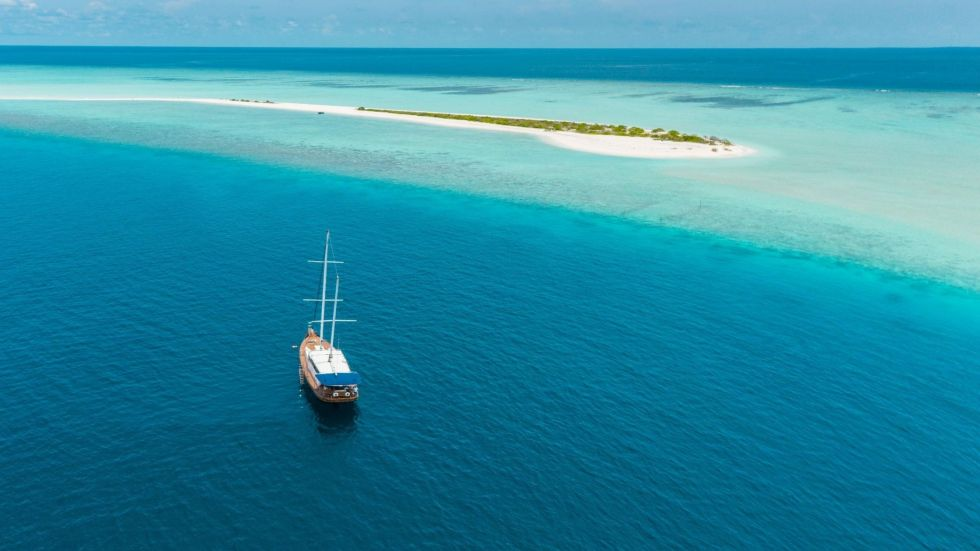 Maldives Fishing Trips