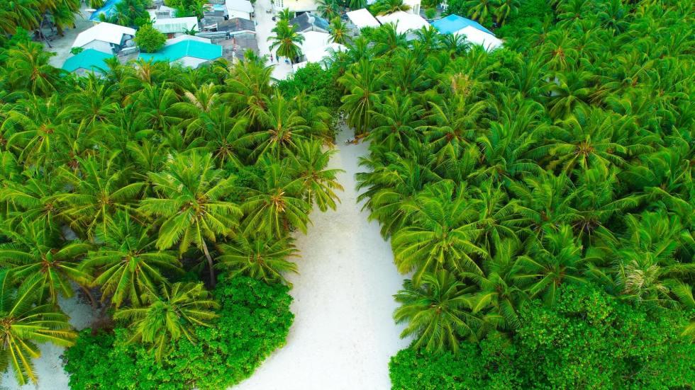 Maldives Island Hopping Tours (w/ Price & Itinerary)