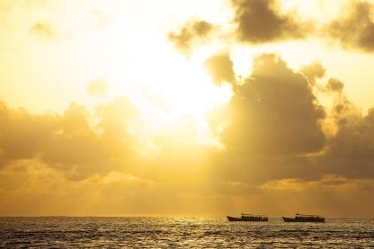 Maldives Sunset Dolphin Cruise Tour Package