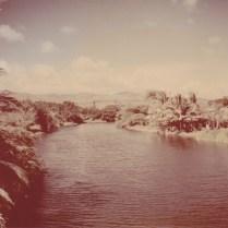 Hanapepe Valley 1950 1