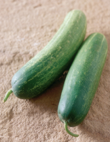 Cucumber Spa ingredients