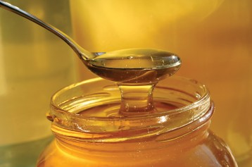 Honey most popular spa ingredients