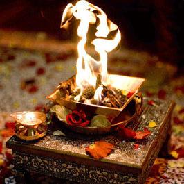Samyak Astro Point, Best Astrologer, Delhi
