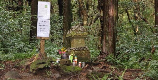 鹿児島に落ち延びた真田幸村と豊臣秀頼伝説を追ってイザ現地調査