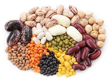 Pflanzliches Protein