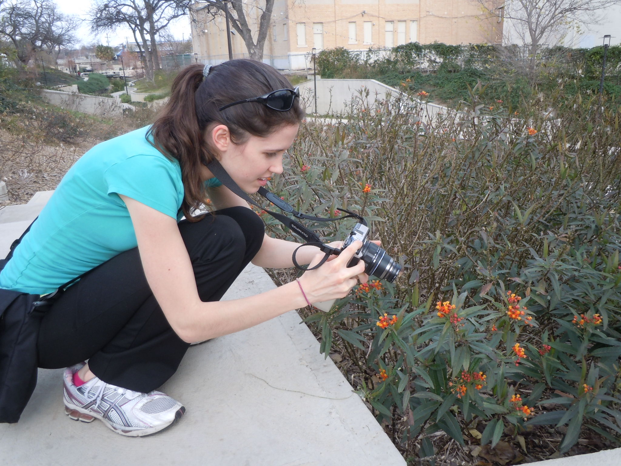 University of Minnesota Graduate Student Kelly Nail at the Museum Reach Milkweed Patch