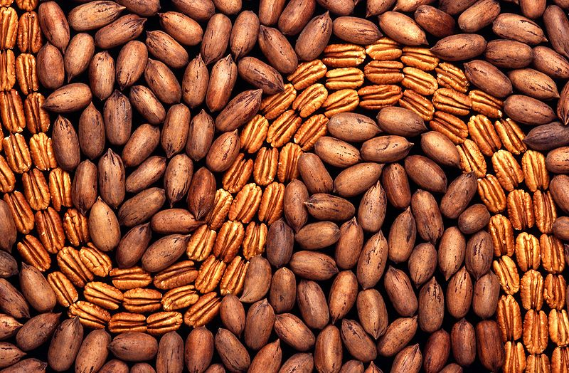 Pecans, shelled and unshelled