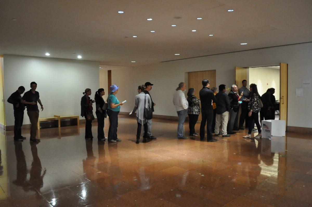 Voting line at the Central Library 2