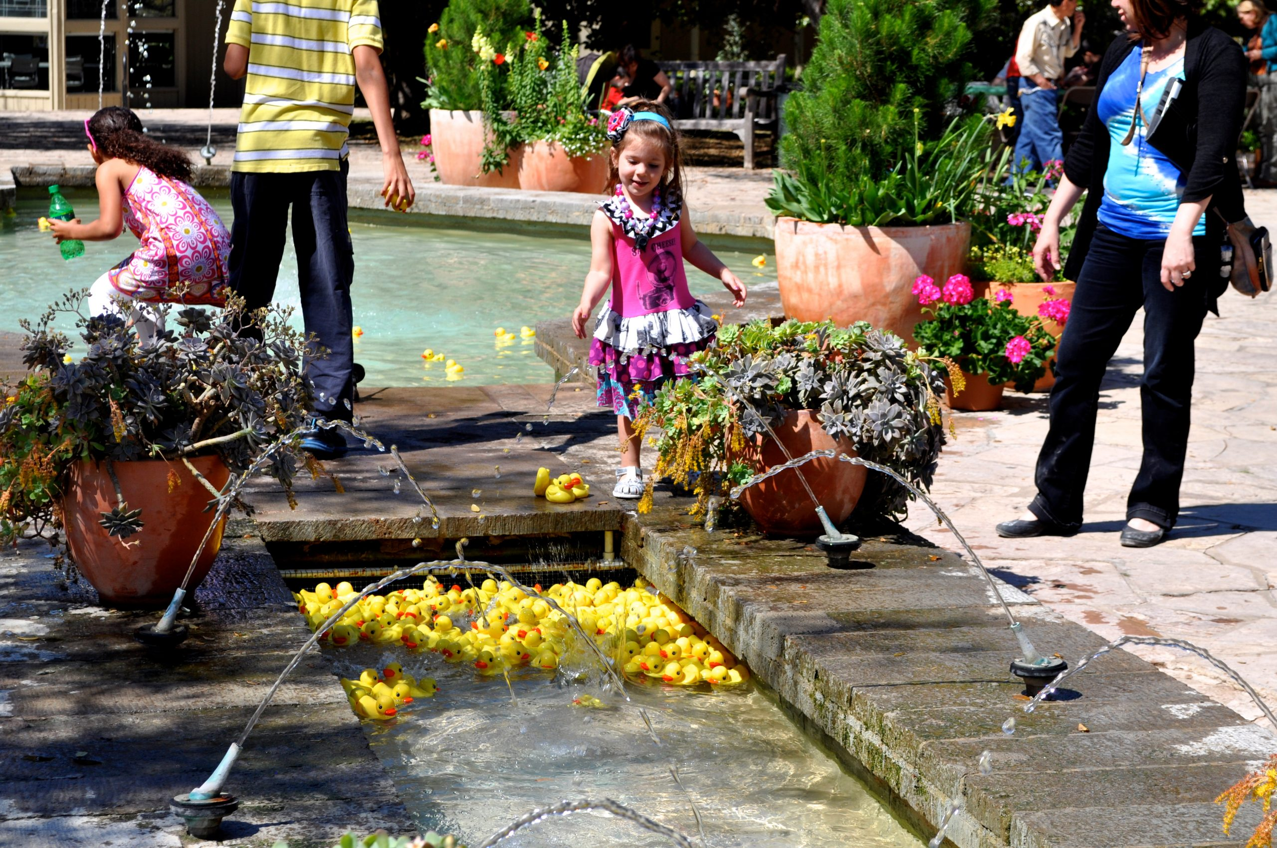 Amber spent a good portion of her afternoon throwing rubber ducks into the fountain at the Botanical Gardens. Not an example of the many educational activities available at the garden .... but an example of easy fun. Photo by Iris Dimmick.
