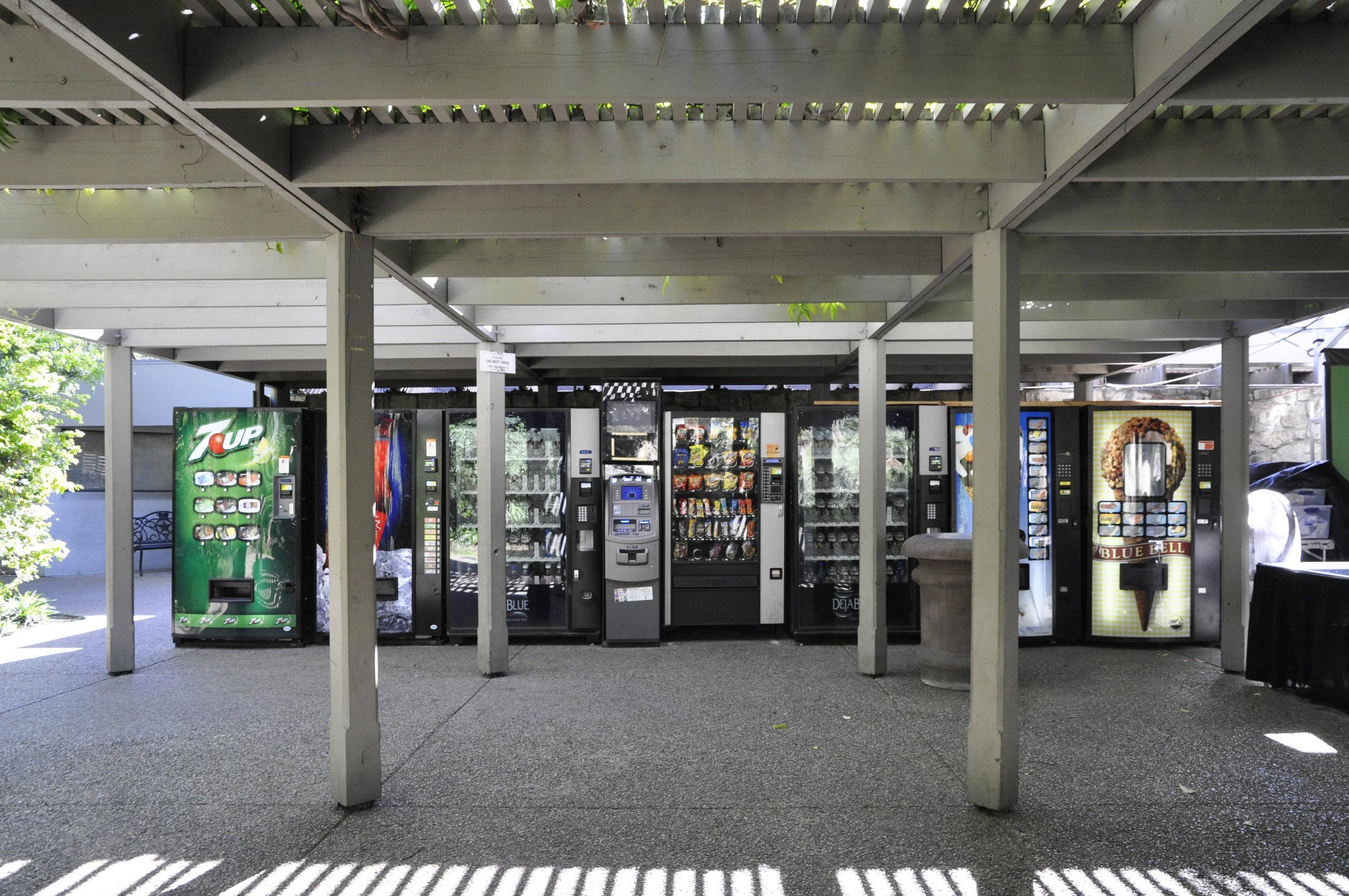 Today's Alamo Plaza is an odd amalgamation of memorialized history and brash commerce. Image courtesy Brantley Hightower.