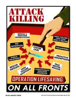 """These are the components of the """"No Kill Equation"""" developed by Nathan Winograd of the No Kill Advocacy Center. These humane methods will help a shelter and a community eliminate the shelter killing (""""euthanasia"""") of healthy and adoptable pets and reduce the stray and free roaming population of dogs and cats. This graphic comes from the article, """"We Can Do It! A No Kill Guide for Animal Shelters, May 2013."""
