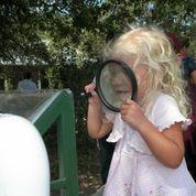 A child investigates science in nature at the Cibolo Nature Center. Courtesy photo.