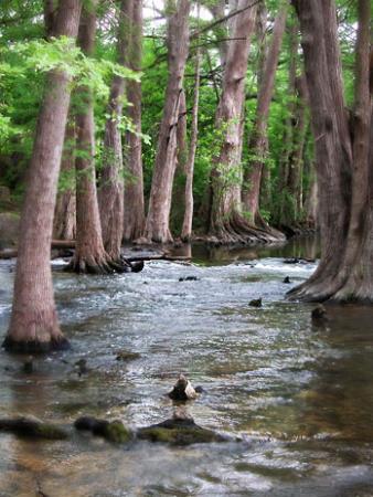 Cibolo Creek. Courtesy photo.