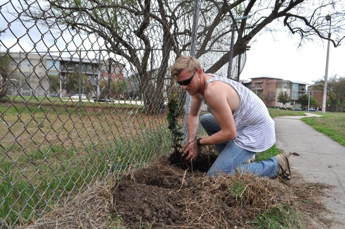 Jeremy Bastche plants evergreen vines along park fencing at Labor Street Park. Photo by Iris Dimmick.