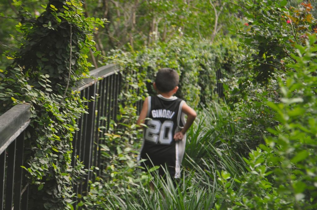"""""""Ginóbili"""" scurries through River Walk foliage during the 2014 Spurs Championship River Parade on June 30, 2014. Photo by Iris Dimmick."""