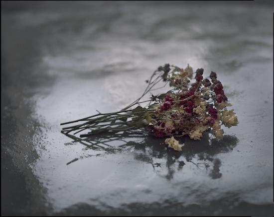 Castro Prieto, Rosas secas, Bodas de sangre, 2010