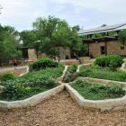 The butterfly garden at Hardberger Park. Courtesy photo.