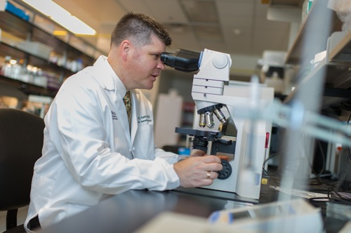 Assistant professor of pediatrics Greg Aune at work in his lab. Photo courtesy of the University of Texas Health Science Center.