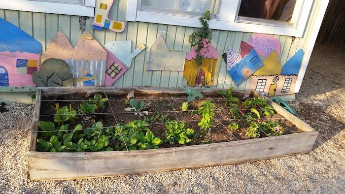 The Circle School garden. Courtesy photo.