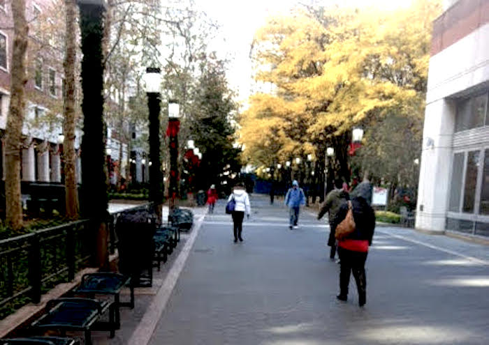 Myrtle Street in Brooklyn is now a pedestrian street. Photo by Kevin Barton.