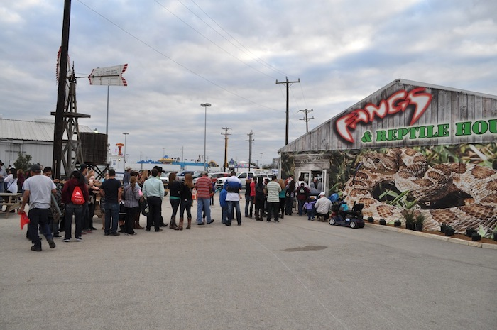 """A long line for the """"Fangs"""" reptilian petting zoo during the 2013 San Antonio Stock Show and Rodeo. Photo by Iris Dimmick."""