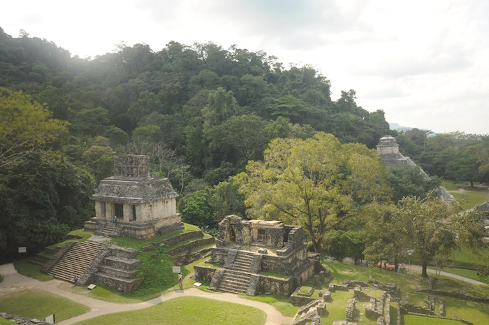 A view of the Palenque ruins. Photo by Everett Redus.
