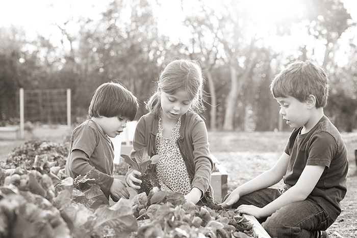 Three kids plant more lettuce. Photo by Rachel Chaney.