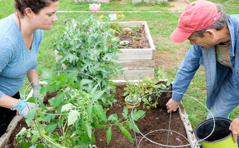 Emily Morlandt (right) and Michael Green (right) work on a raised bed at the GSA Olmos Park Terrace Garden. Photo by Scott Ball.