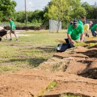 Volunteers transport sod to a field at Wheatley Middle School. Photo by Scott Ball.