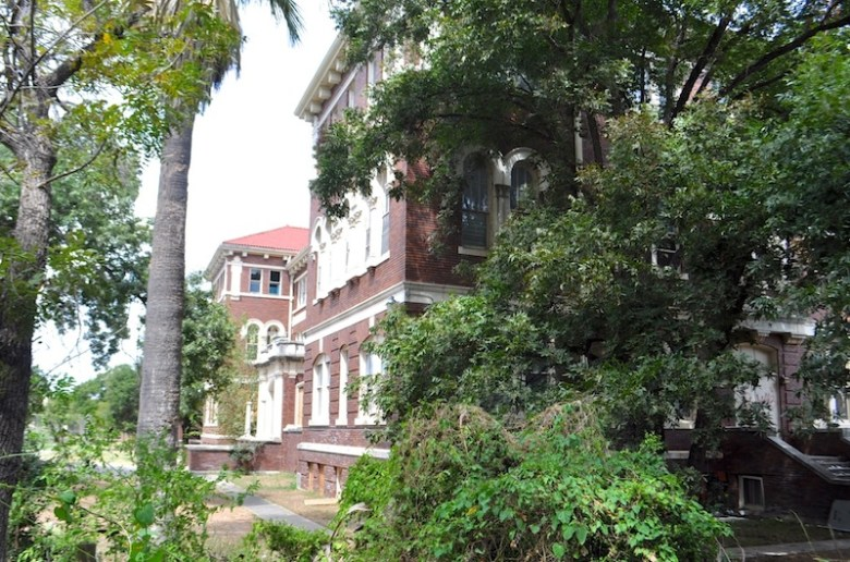 The old seminary is shrouded with trees and overgrown brush behind Mission Concepción. Photo by Iris Dimmick.