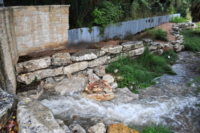 A storm drain releases water in the Eagleland Reach of the San Antonio River. Photo by Iris Dimmick.