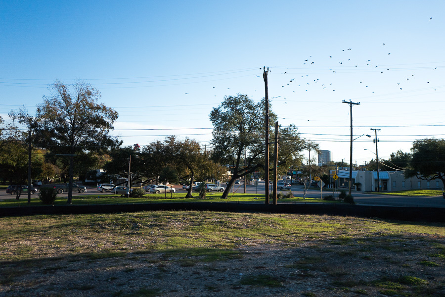 Birds fly over the plot of land that will eventually become an apartment complex in Alamo Heights. Photo by Scott Ball.