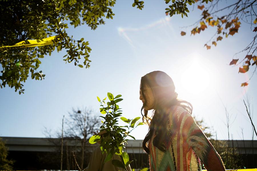 Jammin' Jams Fruit and Nut Tree Adoption, put on by San Antonio Parks and Recreation, gave away pear, plum, lemon, and orange trees. Photo by Kathryn Boyd-Batstone