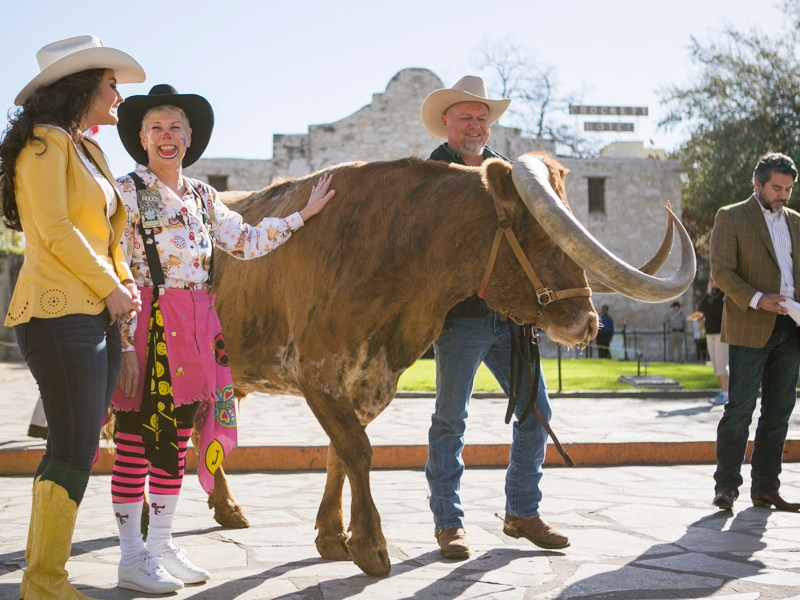 Miss Rodeo Texas and a Texas Longhorn Cattle were in attendance for the welcoming of the 2016 Western Heritage Parade & Cattle Drive. Photo by Kathryn Boyd-Batstone