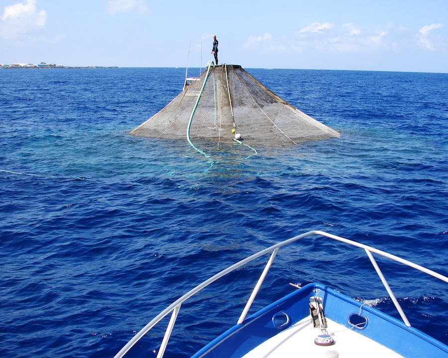 Submersible cage sitting on the surface for cleaning and inspection. Photo courtesy of the National Oceanic and Atmospheric Administration.