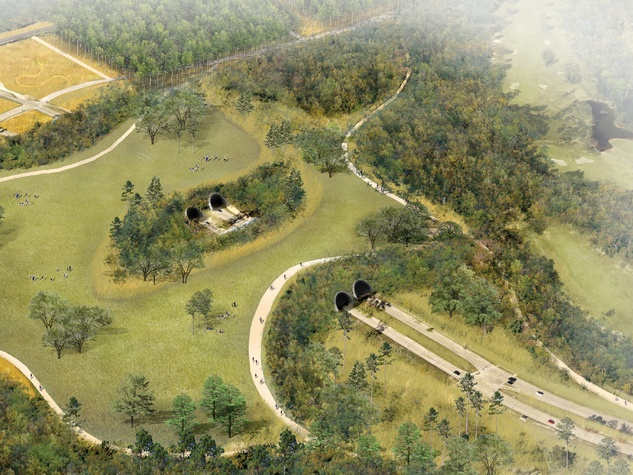 Rendering of proposed land bridge at Memorial Park in Houston. Image courtesy of Nelson Byrd Woltz.
