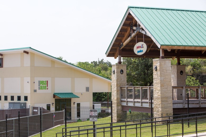 The SAPA (San Antonio Pets Alive!) Paul Jolly Adoption Center on Tuleta Drive. Photo by Scott Ball.