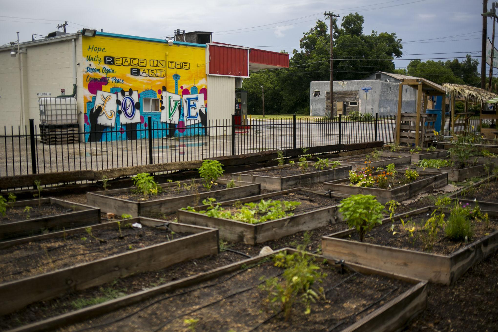 Gardopia Gardens is located at 619 N New Braunfels Ave. Photo by Kathryn Boyd-Batstone.